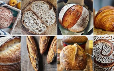 Perfis de apaixonados por pães para seguir no Instagram