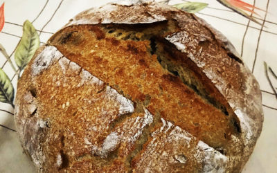 Receita de Pão semi-integral rústico com nozes e mel